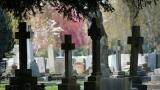 Request to increase funeral sizes in Birmingham is rejected despite plea on behalf of Muslims