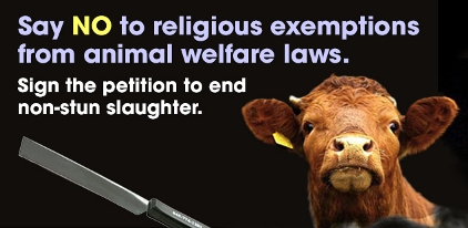 http://epetitions.direct.gov.uk/petitions/64331